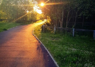 Sunset and Path